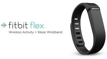 Fitbit Flex Logo
